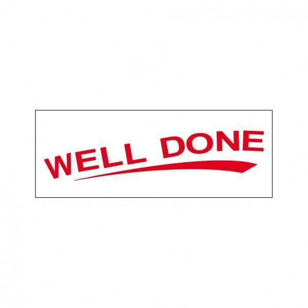 Well Done Stock Stamp TS-5, 38x14mm